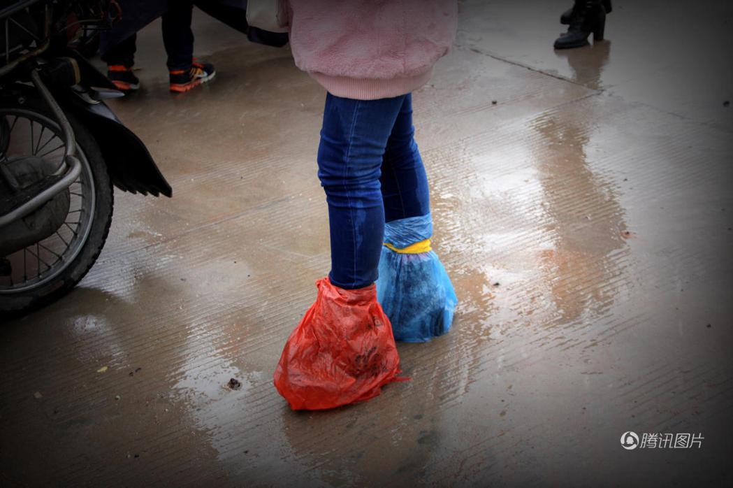 小候鳥的鞋子包著塑膠袋以免被雨水打濕。(騰訊圖片)