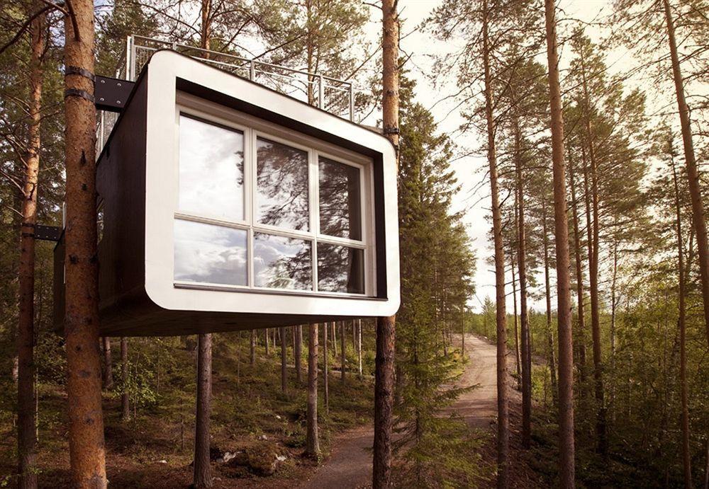 瑞典樹屋飯店 (Tree Hotel)。Hotels.com/提供