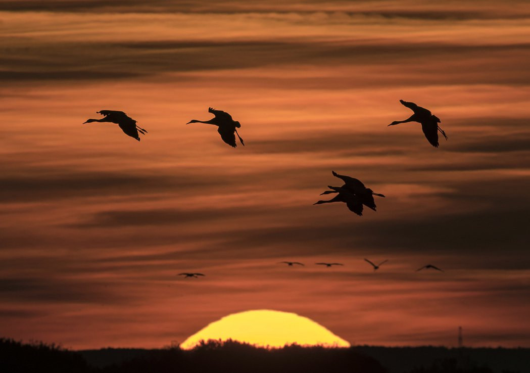 圖說:夕陽無限好,只是近黃昏。據編輯表示,很久沒看過黃昏了。 圖/美聯社