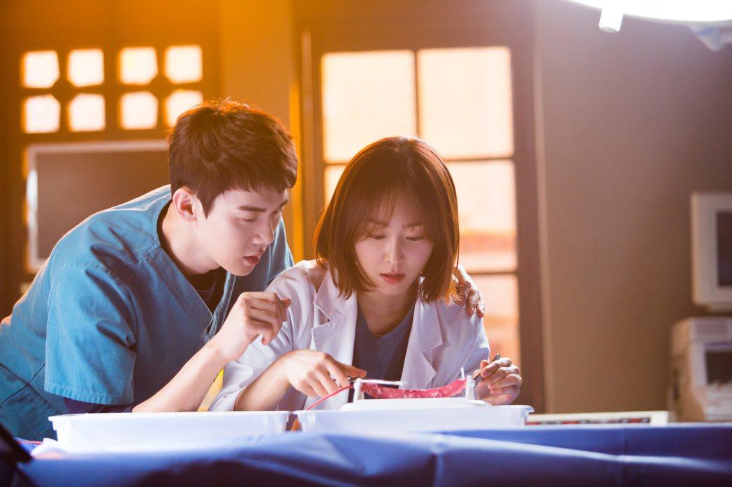 柳演錫(左)在「浪漫醫生」中猛烈追求徐玄振。圖/KKTV提供
