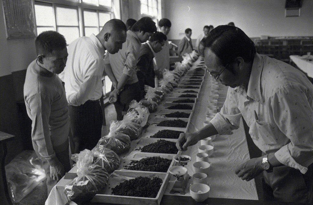 1975年臺灣首次開辦「茶比賽」,標誌著政府和茶業經營者開始關注內銷市場。 圖/...