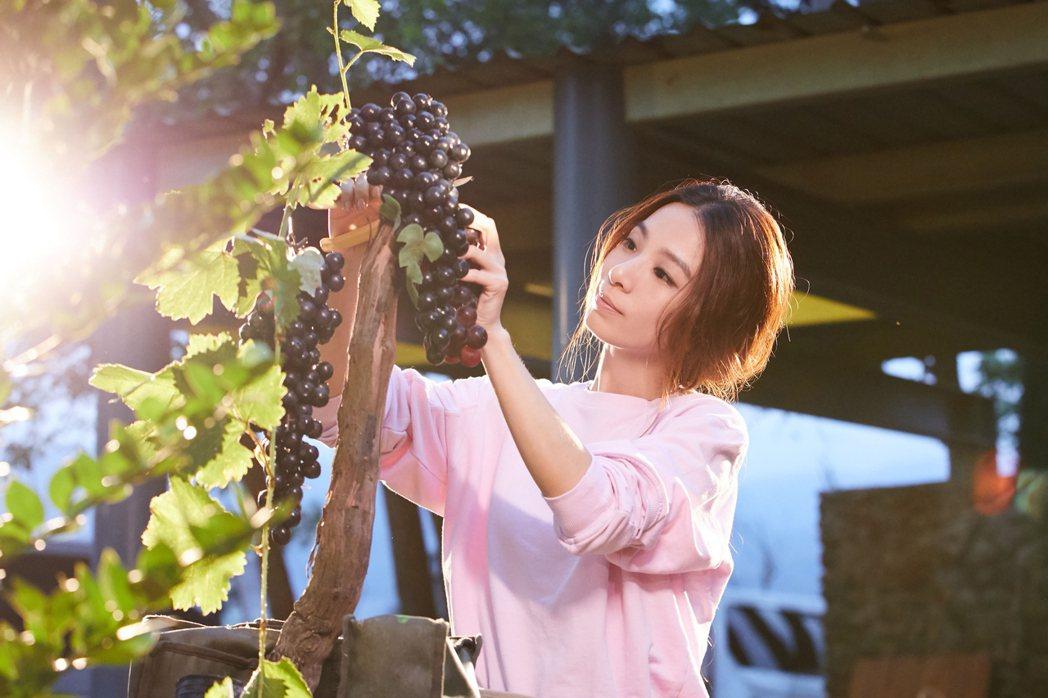田馥甄「日常」MV,宜蘭扮演一日小農。圖/華研提供
