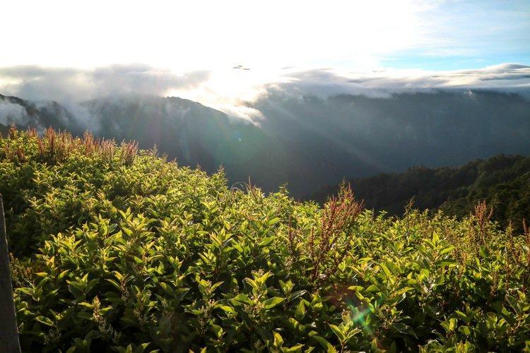 合歡山景色迷人。 記者史榮恩/攝影