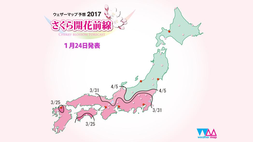 Weather Map所公布的賞櫻預測時間。圖/摘自Weather Map網站