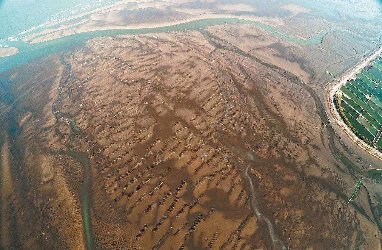 彰化海岸有六公里寬的潮間帶。 彰化環保聯盟/提供