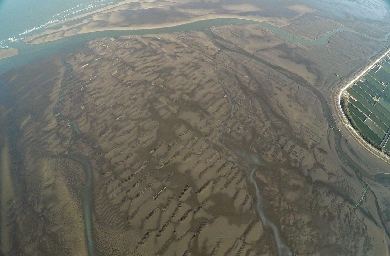 彰化海岸有六公里最寬的潮間帶,擁有保育類鳥類包括大杓鷸、黑嘴鷗等,環團催生彰化海...