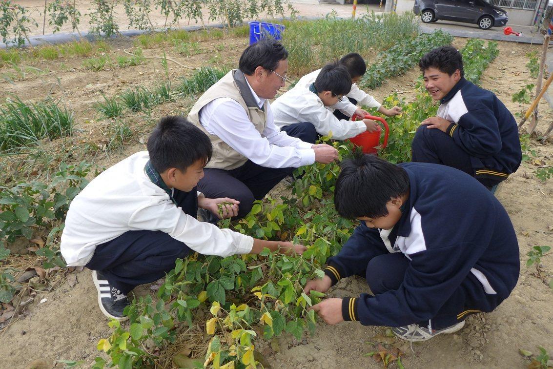 林國斌校長(左二)、莊沂璋(右二)和同學們一起種菜。(黃志平先生攝影)