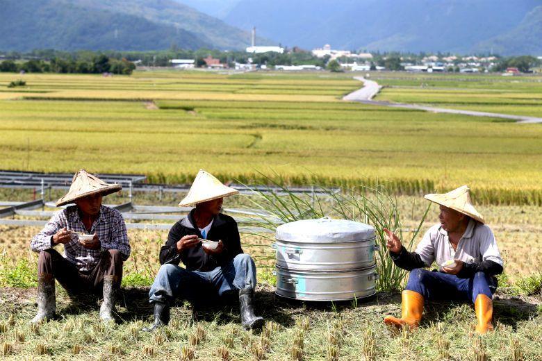 李香誼/月台與池上便當──家鄉的第一道與最後一道風景