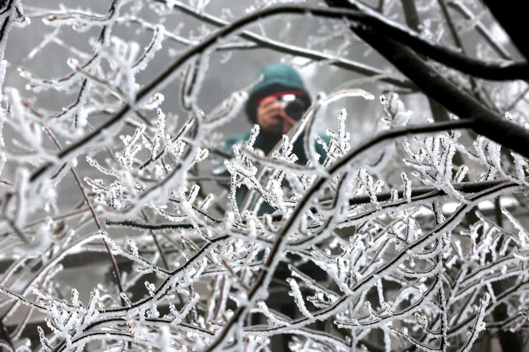 立春湖南張家界天子山景區出現霧凇冰掛景觀,吸引眾多中外遊客。 中新社
