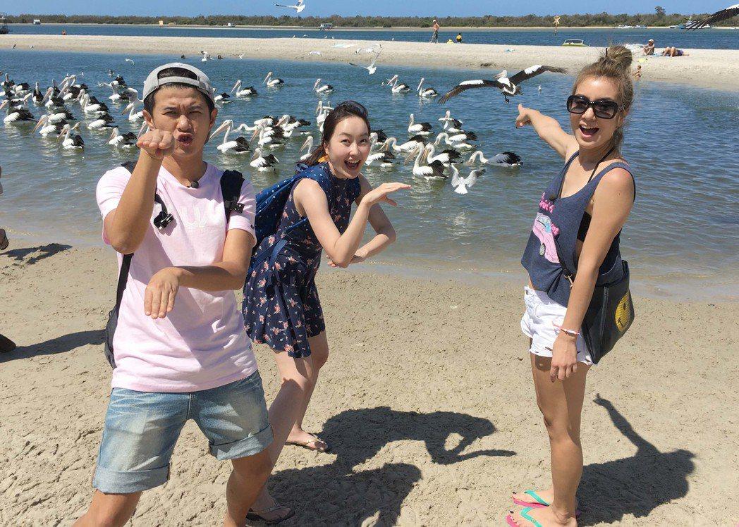 莎莎、顏永烈和巴鈺在澳洲海灘。圖/TVBS提供