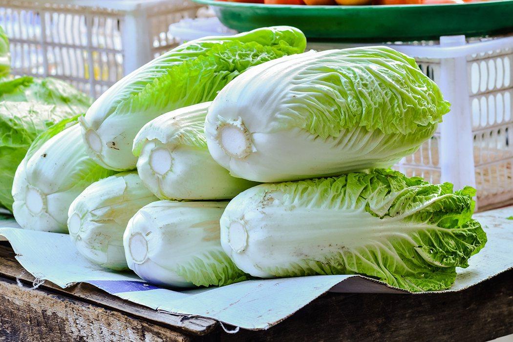 大白菜具有較高的營養價值,特別是當中含有較為豐富的維生素C和微量元素硒,能對抗「...