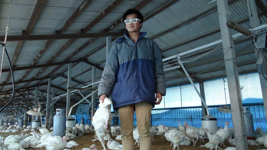 飼主兒子拎起死亡的雞隻相當無奈。記者謝進盛/攝影
