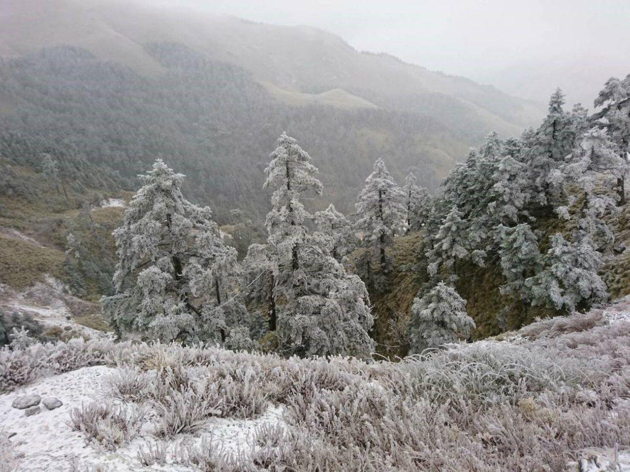 這波寒流山區氣溫降至攝氏零度,花蓮中橫和合歡山飄雪,山壁結成冰柱;台東南橫公路向...
