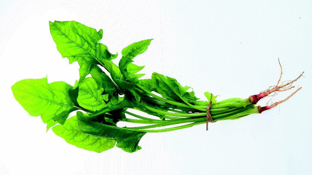 菠菜+豆腐=毒?菠菜含草酸,豆腐中含有鈣,草酸加鈣會造成結石,讓腸子布滿結石...
