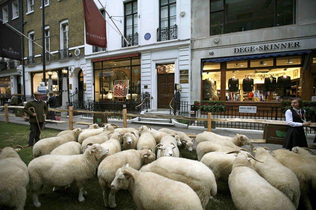 英國本地有六十多種綿羊,生產多種毛料,除了作成毛線,還可供足球、地毯之用。 ...