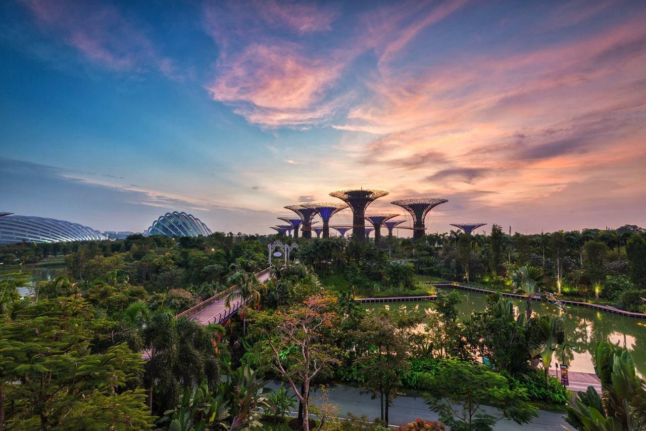 """新加坡这样一个相当晚近才规划出来的""""花园城市"""",乍看之下是个揉合人类和自然在一起..."""