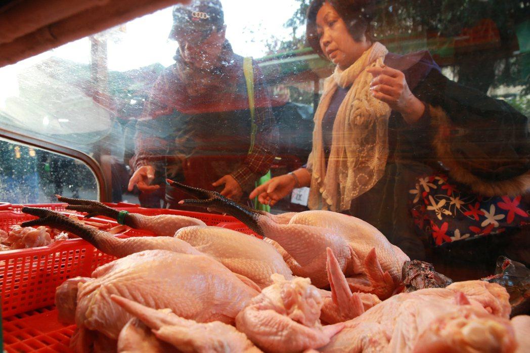 防禽流感,今天起家禽屠宰場禁宰7天。記者黃義書/攝影
