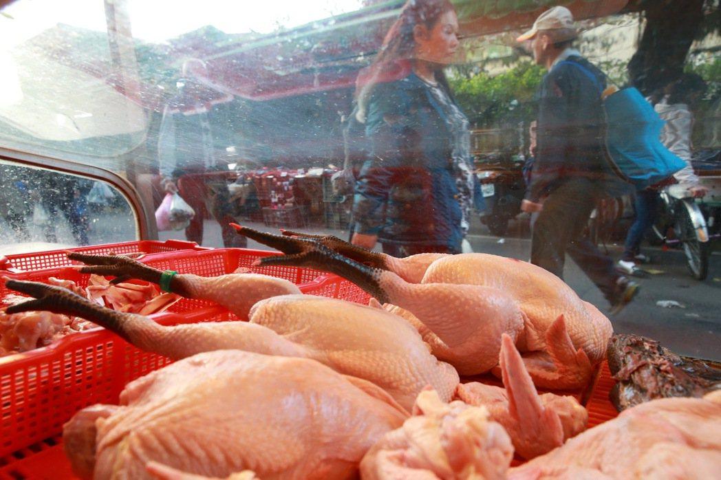 禽流感疫情升溫,為了防疫,農委會昨天決議,自17日起,全面禁運、禁宰家禽至24日...