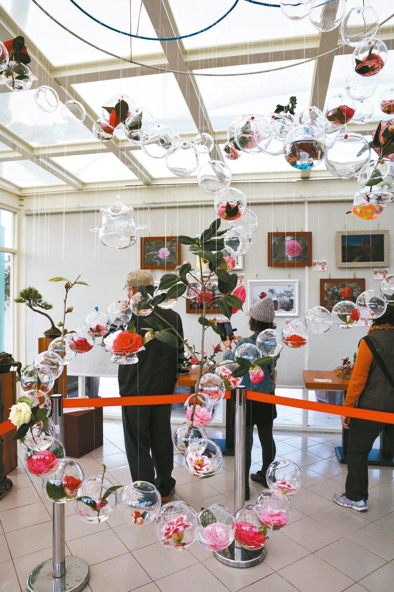 「2017新竹茶花設計展─『艷遇-青草湖』」首次結合新竹兩大特色,玻璃與茶花。 ...