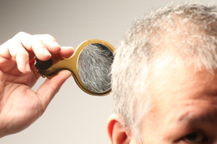 許多銀髮族都希望成為「黑髮族」,看到白髮不是拔掉就是乾脆整頭染黑。 記者陳立凱/...