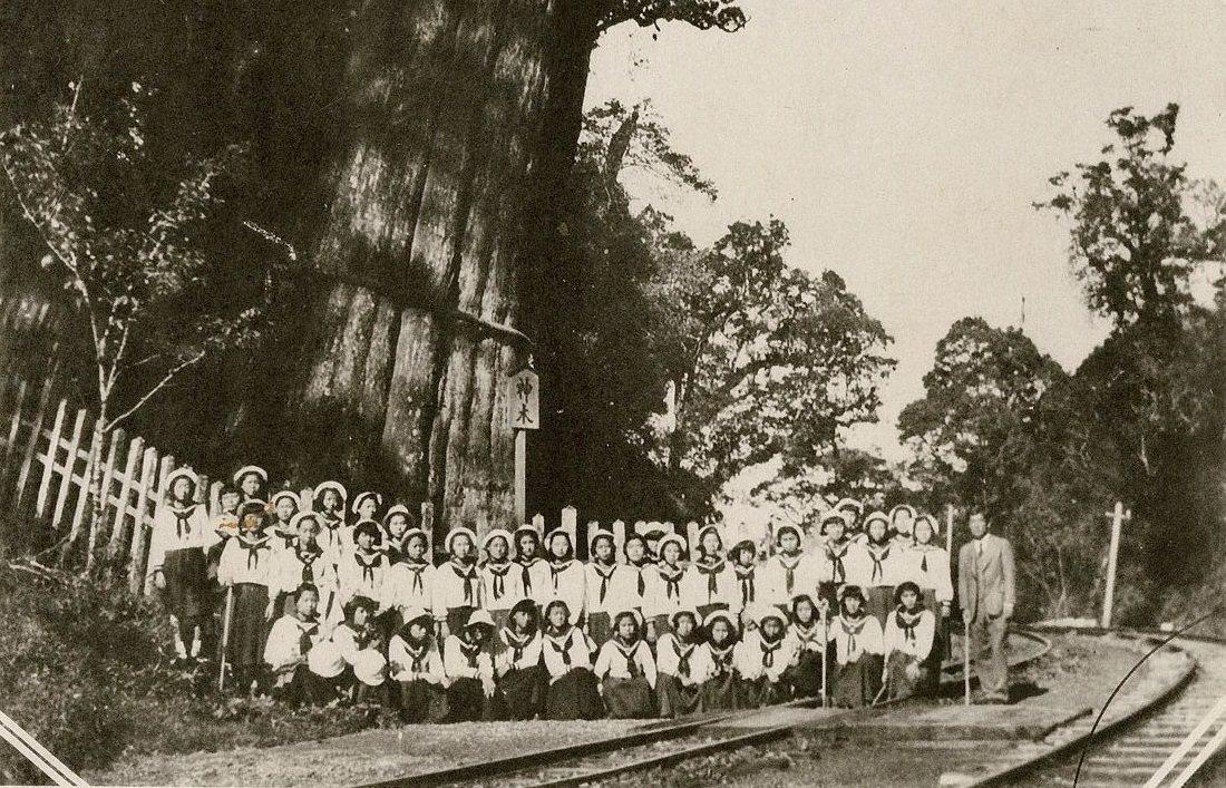 1941年靜修女學校畢業旅行與阿里山神木合影。