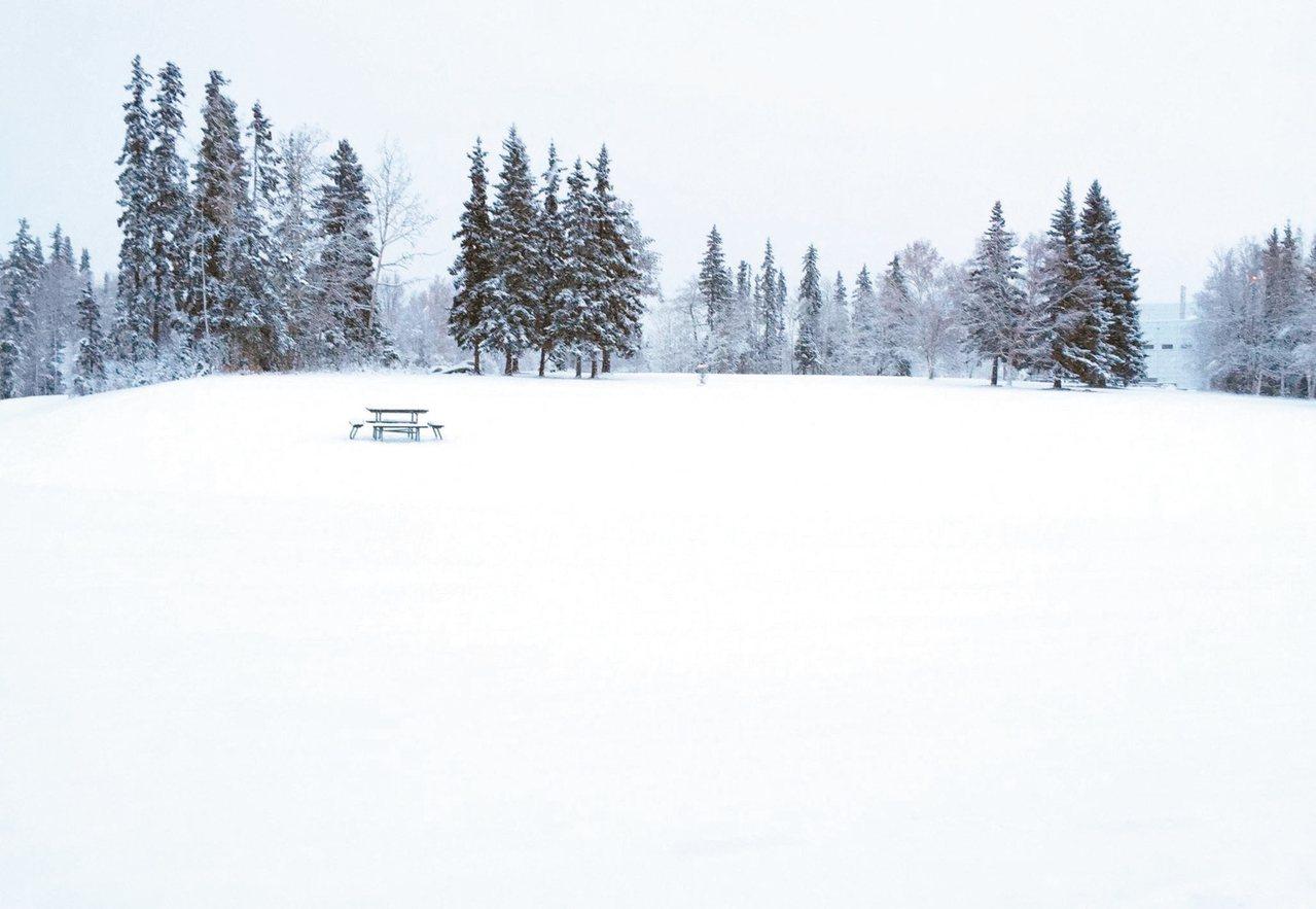 剪影雪的等待 梁正宏 圖