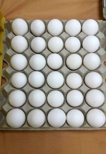 食品藥物管理署今天預告訂定「生鮮雞蛋品洗選作業指引」草案 ,從原料蛋的挑選,洗選...