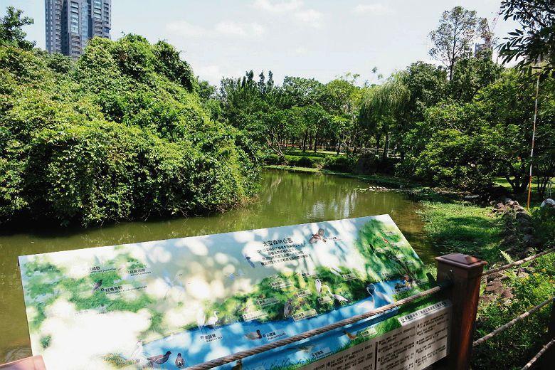 台北雖為台灣政治中心,在人均綠地面積一事上卻非六都之首,且綠地不但不足還分布不均,內部存在著地區間差異。 圖/聯合報系資料照