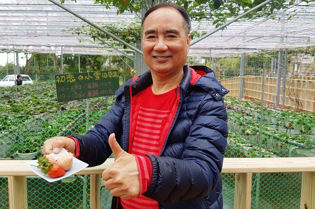68歲的宜蘭囝仔郭漢東,返鄉成功栽植日本白草莓。記者吳佩旻/攝影