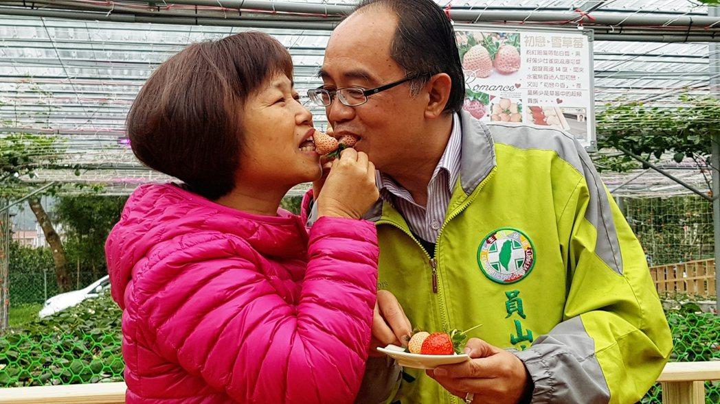 員山鄉長江永和(右)和夫人合吃一顆白草莓,號稱有「初戀的滋味」。記者吳佩旻/攝影