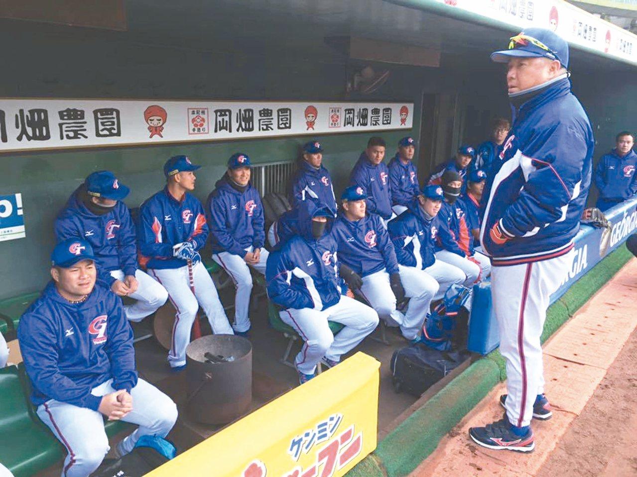 經典賽中華隊在神戶展開訓練。 圖/中華棒球協會提供