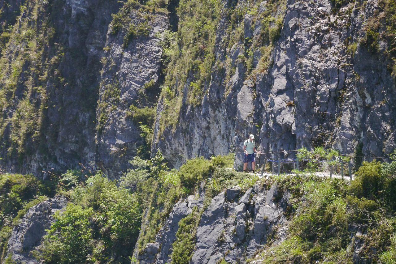 古道高懸在錐麓斷崖上,海拔約750公尺,距離立霧溪谷垂直落差約500公尺,有豐富...
