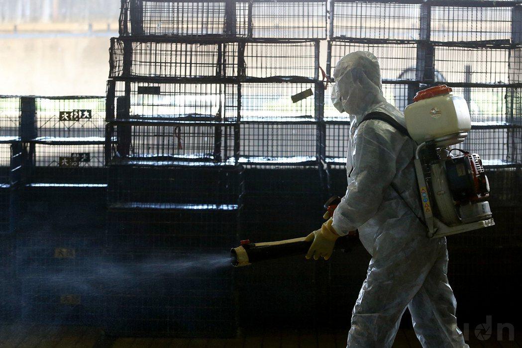 H5N6禽流感疫情升溫,台北市家禽批發市場為防範禽流感病毒入侵,積極為全區及禽籠...