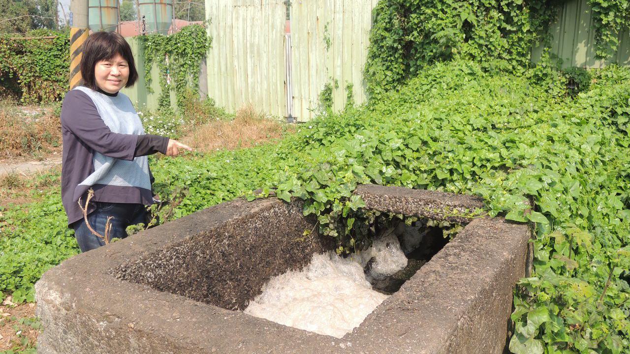 屏東縣議員蔣月惠今天到台糖養豬場周邊巡查,發現養豬場照常排水,質疑「水從哪裡來」...