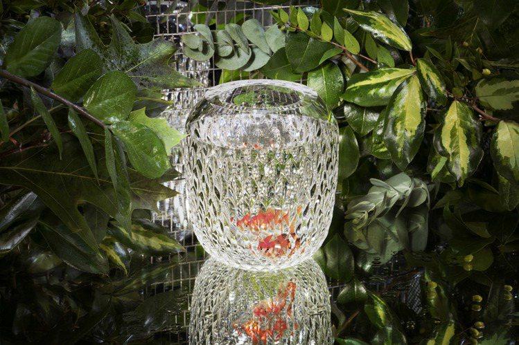 Folia系列水晶花瓶情境圖。圖/聖路易Saint-Louis提供