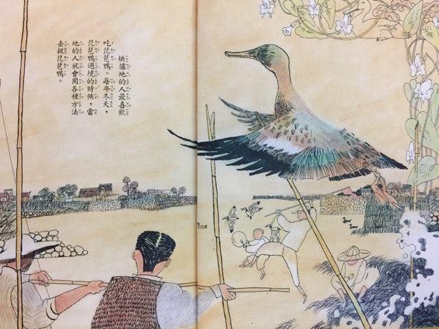 烘爐地的人們最喜歡吃琵琶鴨,當地人會用各種方法抓琵琶鴨。圖/王怡鳳提供