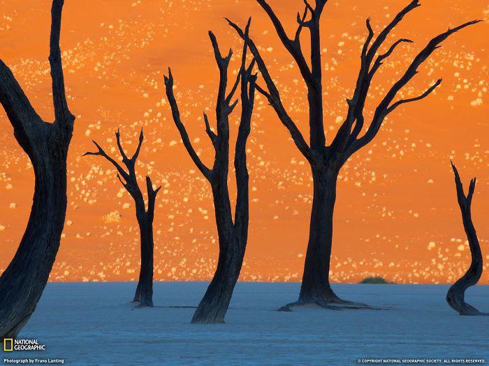 荷蘭籍攝影師Frans Lantin替為國家地理雜誌拍攝的納米比亞索蘇斯的橙色沙...
