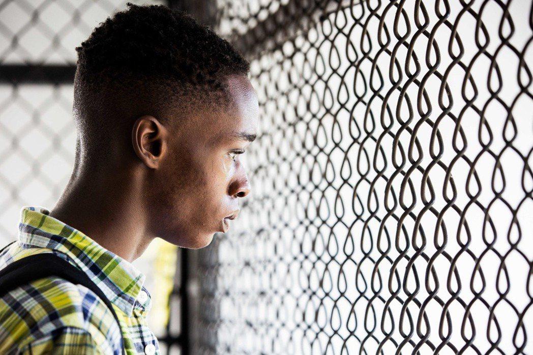 今年奧斯卡最佳影片的《月光下的藍色男孩》。圖/傳影互動提供