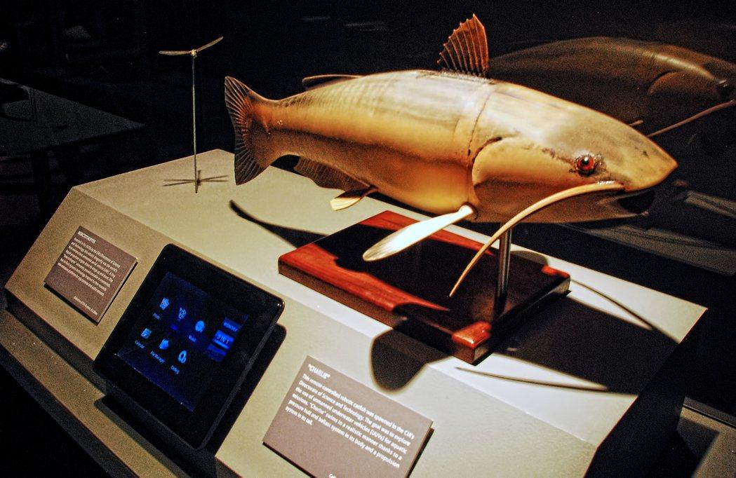 CIA查理Charlie遙控機器人鯰魚。 圖/翻攝自網路