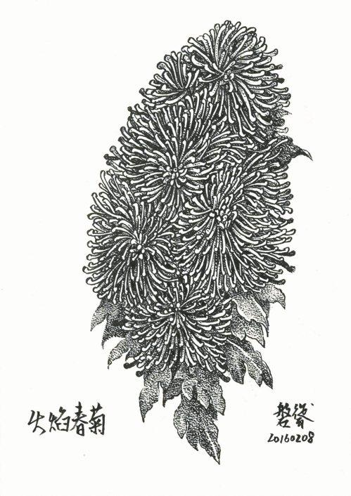 每個人都有屬於自己的台灣,而我的台灣就是在A4大小的紙張上,將每天所面對的植物、...