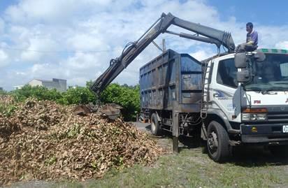 透過大型機具,將果樹樹幹破碎後,可回歸土壤成為肥份,還可以做成燃料棒。 圖/屏東...