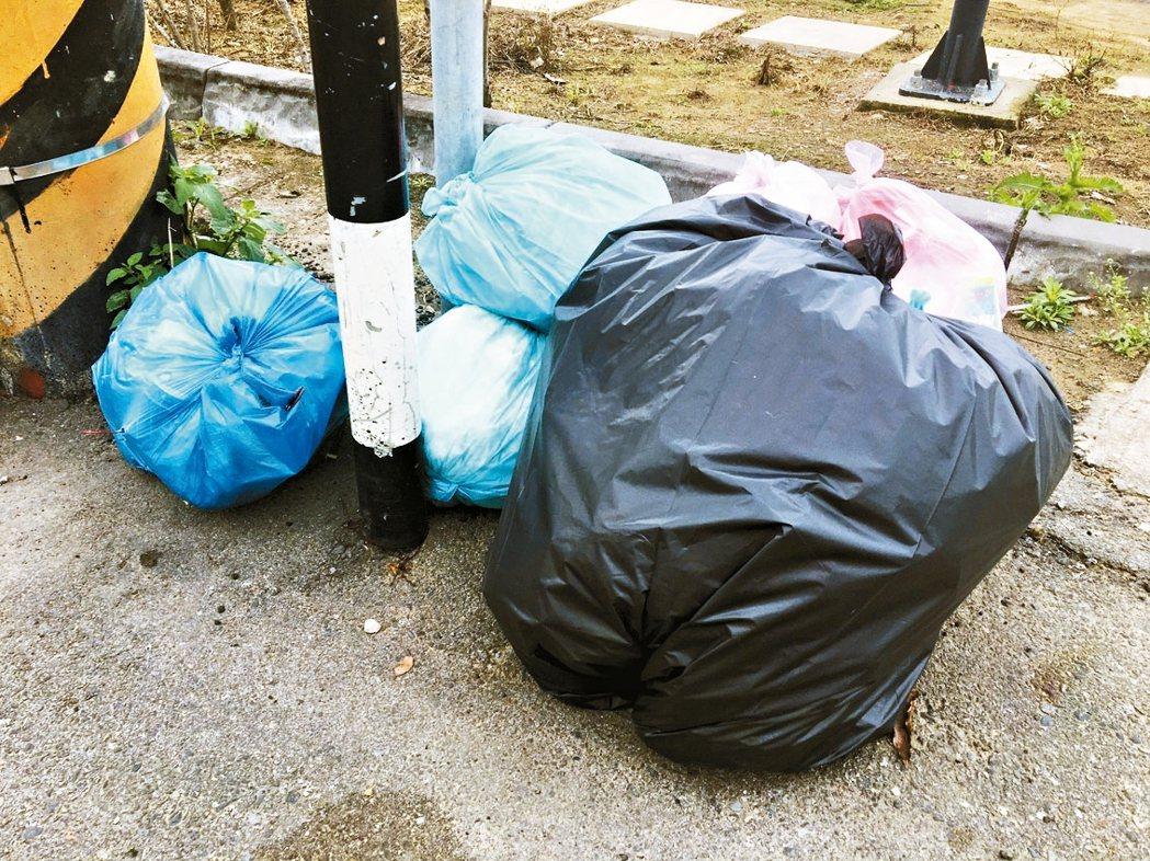 大部分塑膠袋為有色或不透明材質,裡頭裝載垃圾種類不明。 記者張裕珍/攝影