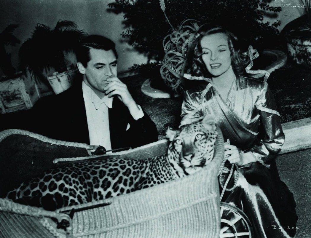 卡萊葛倫、凱薩琳赫本與豹在「春閨風韻」製造一堆笑料。圖/摘自imdb