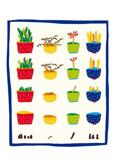 Q:李達達您好,我養死過很多植物,九層塔、迷迭香、巴西里,多肉植物雖然撐得比較久...