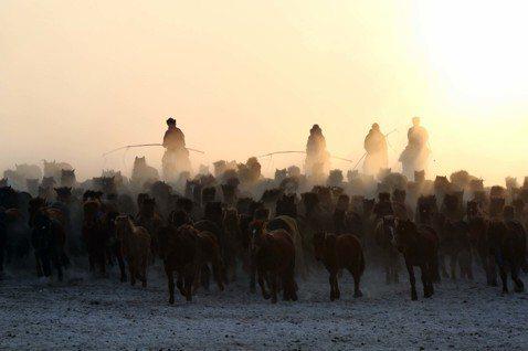 「天蒼蒼,野茫茫,風吹草低見不著娘。」在光譜的另一端,主流的環境論述也常把蒙古的...