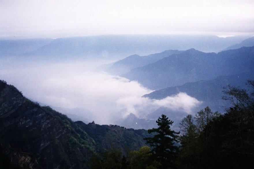 阿里山雲海。圖/取自wikipedia