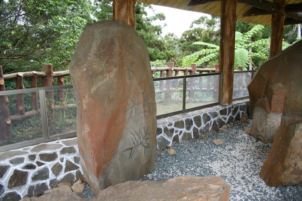 東眼山化石區的生痕化石,驗證了台灣島是造山運動從海底隆升出海水面所形成。 圖/東...