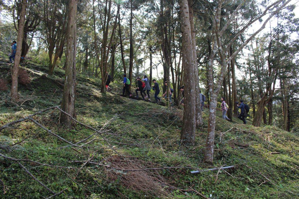 參加東眼山導覽,年輕人可走坡度大的路線,親子團就走平坦的路線。 記者張雅婷/攝影