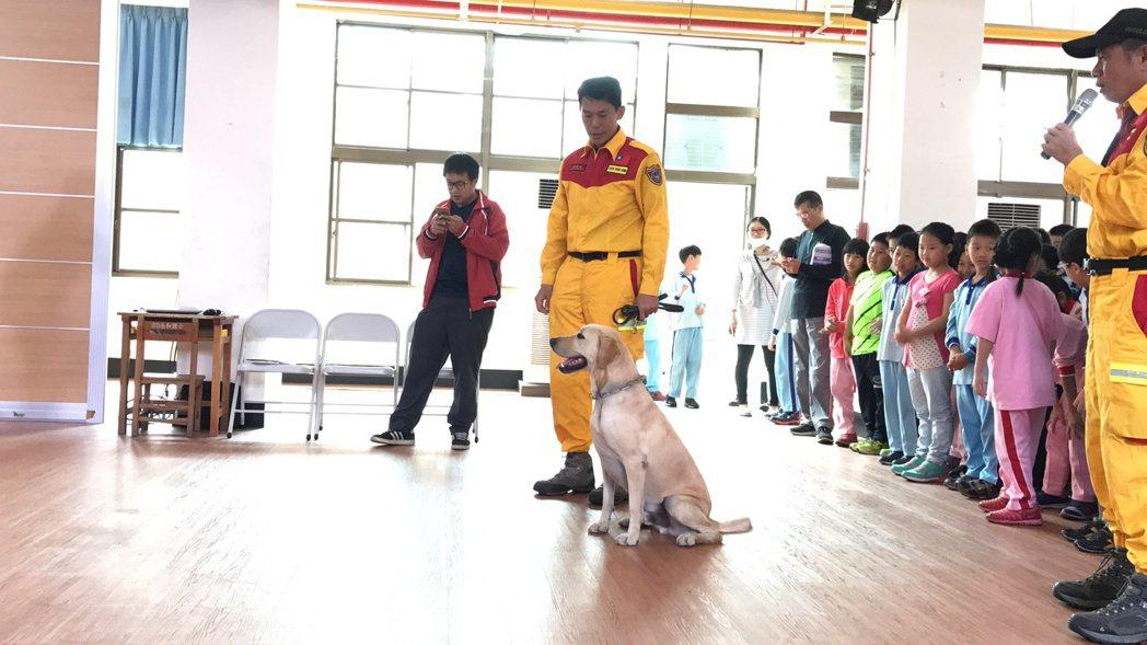 高市消防局搜救犬引導員陳孟弘(中)帶領搜救犬柯林校園宣導,柯林準備展開搜尋藏匿在...