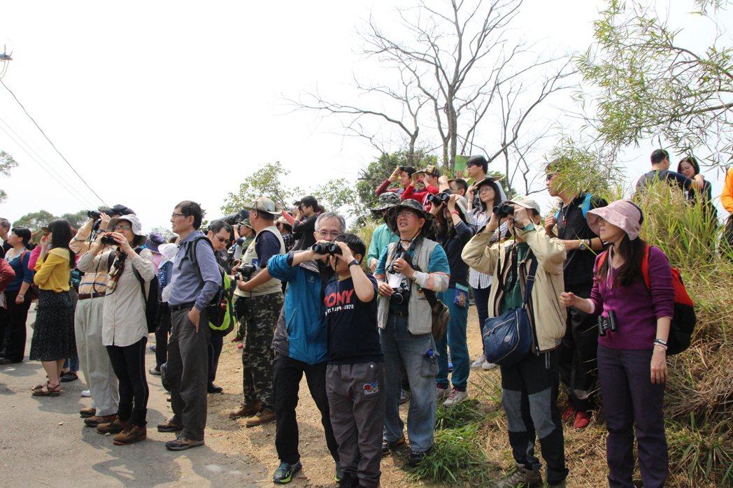 民眾到賞鷹小徑尋找灰面鵟鷹的蹤跡。記者林敬家/攝影